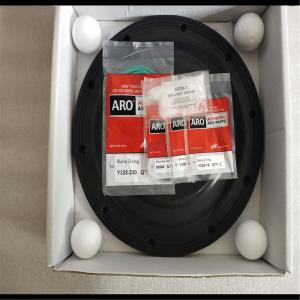 Ingersoll Rand Diaphragm Pump Repair Kit
